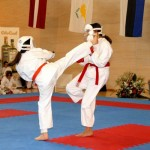 karate-training
